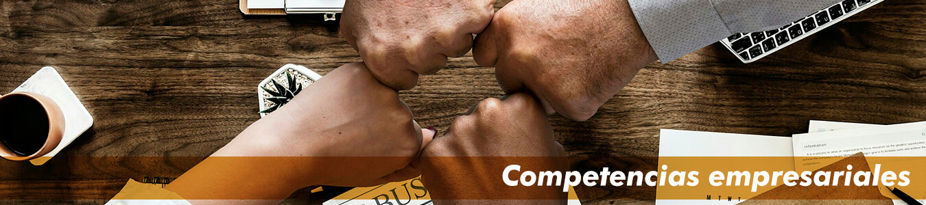 competencias-empresariales
